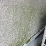 塗膜の汚れ