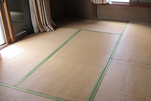畳のリフォームを行う前の必要知識